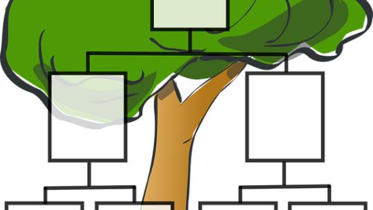 Comment faire l'arbre généalogique de sa famille ?